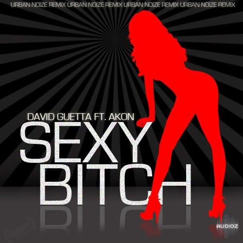 David guetta ft akon sexy bitch download