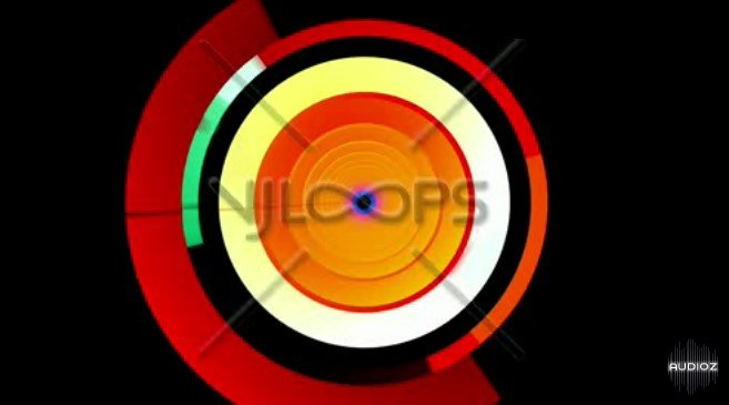 Loopmasters Bass Boutique Ragga Vocals Vol 1 MULTiFORMAT DVDR13
