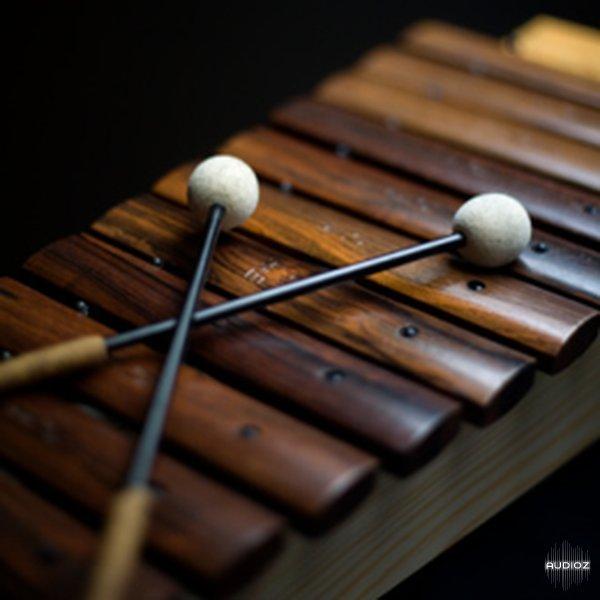 Download Ableton Orchestral Mallets v9.0.32873 for Ableton ...