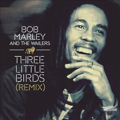 DJ Ayi Presents Best Of Bob Marley Mixtape