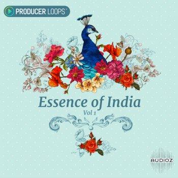 Producer Loops Essence of India Vol.1 ACiD WAV screenshot