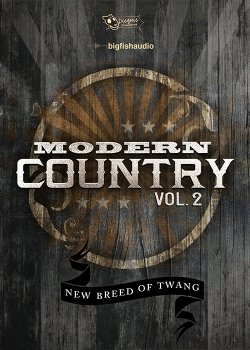 Dieguis Productions Modern Country Vol.2 KONTAKT screenshot