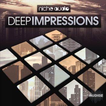 Niche audio Deep Impressions Ableton 9.6.2+ screenshot