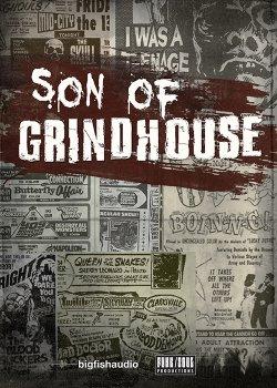 Funk Soul Productions Son of Grindhouse AiFF REX KONTAKT screenshot