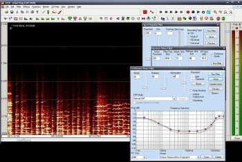 Diamond Cut Audio Restoration Tools v10.50 REPACK-CRD screenshot