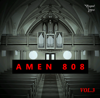Regal Loops AMEN 808 Vol 3 WAV MiDi-DISCOVER screenshot