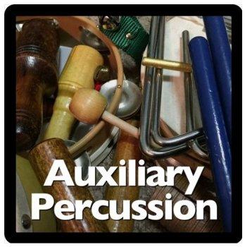 Michael Picher Auxiliary Percussion v1.1.1 WAV SFZ [FREE] screenshot