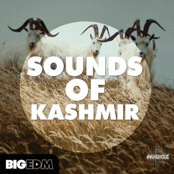 Big EDM Sounds Of Kashmir WAV MiDi Sylenth1 Spire Serum screenshot