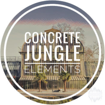 Columbo Sounds Concrete Jungle Elements WAV KONTAKT [FREE] screenshot
