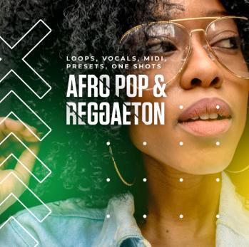 Download Diginoiz Afro Pop And Reggaeton WAV MiDi REVEAL