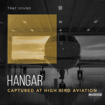 That Sound Hangar MULTiFORMAT screenshot