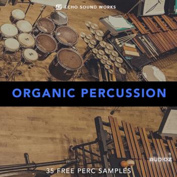 Echo Sound Works : Organic Percussion V.1 WAV [FREE] screenshot