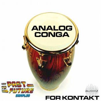 Past To Future Samples - Analog Conga Percussion KONTAKT [FREE] screenshot