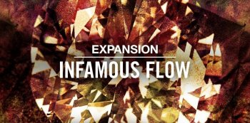 Native Instruments Expansion INFAMOUS FLOW v1.0.0 DVDR-SYNTHiC4TE  screenshot