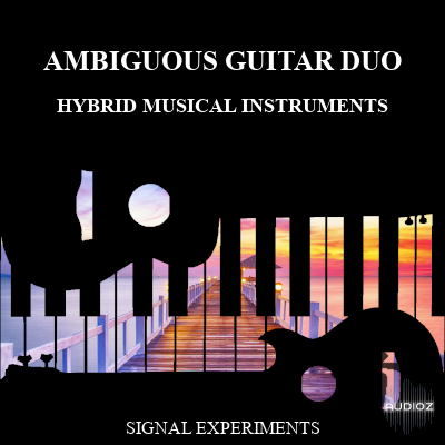 Download Signal Experiments The Ambiguous Guitar Duo SFZ WAV [FREE
