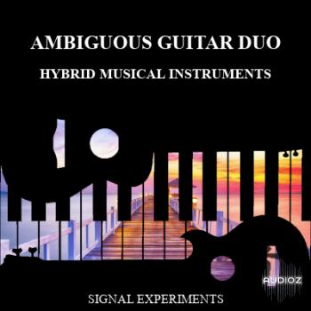 Signal Experiments The Ambiguous Guitar Duo SFZ WAV [FREE] screenshot