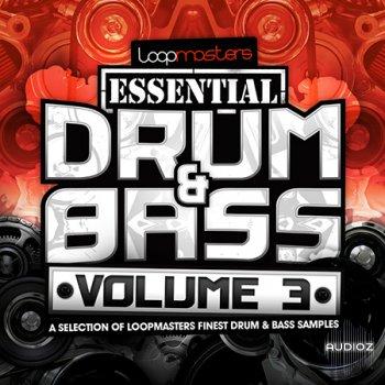 Loopmasters Essentials 41 Drum and Bass Vol 3 WAV screenshot