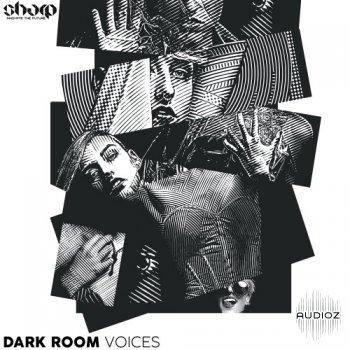 Function Loops Dark Room Voices WAV screenshot