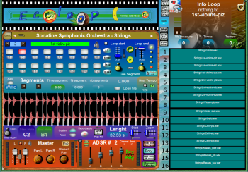 Midi Mobiles Ecoloop v1.9998 x86 VST WiN [FREE] screenshot