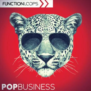Function Loops Pop Business WAV MiDi VSTi PRESETS-DISCOVER screenshot