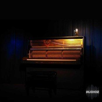 Detunized Upright Piano LIVE screenshot