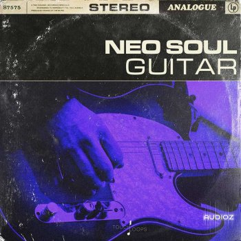 Touch Loops Neo Soul Guitars WAV screenshot