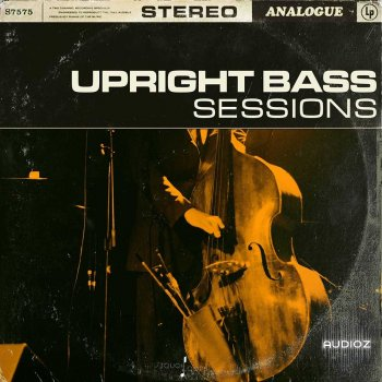 Touch Loops Upright Bass Sessions WAV screenshot