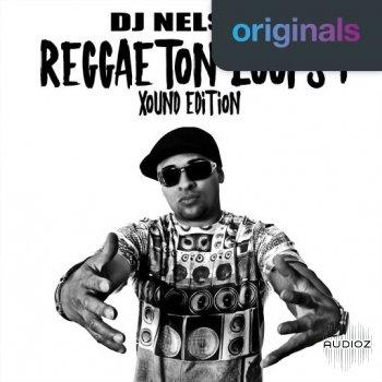 Dj Nelson Reggaeton Loops 1 WAV screenshot