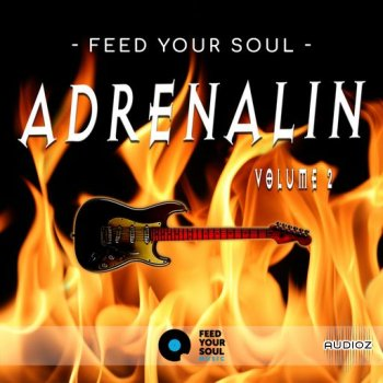 Feed Your Soul Music Feed Your Soul Adrenalin Volume 2 WAV screenshot