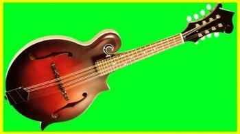 udemy Beginner Mandolin Course Mandolin Mastery From The Beginning screenshot