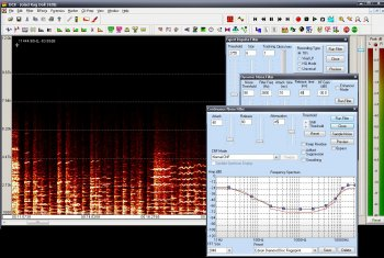 Diamond Cut Audio Restoration Tools 10.50 Portable screenshot