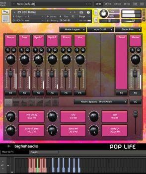 Big Fish Audio Pop Life: Modern Pop Hits KONTAKT RMX screenshot