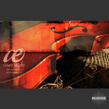 REQ: David Graey Tormented Strings KONTAKT screenshot