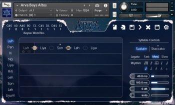Strezov Sampling ARVA Children Choir v1.1 KONTAKT screenshot