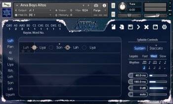 Strezov Sampling ARVA Children Choir KONTAKT (Player Edition) screenshot